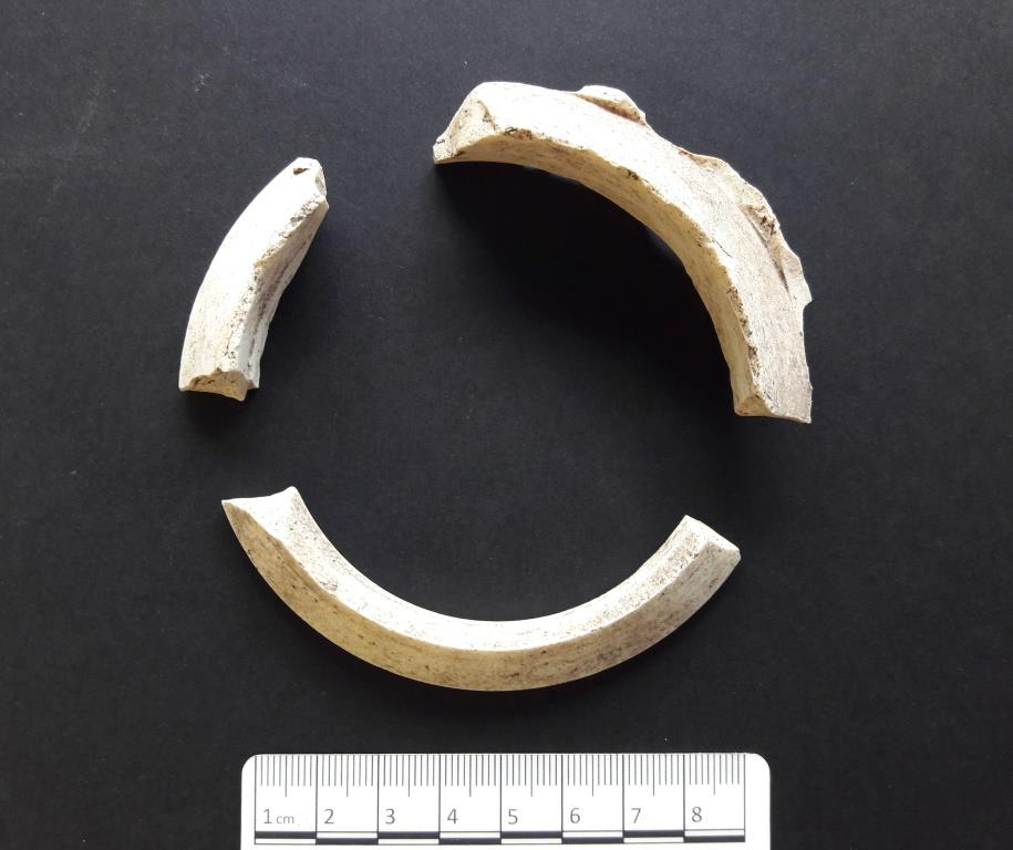 Three fragments of circular white kiln spacers