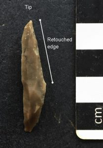 Mesolithic Obliquely-blunted point Herefordshire
