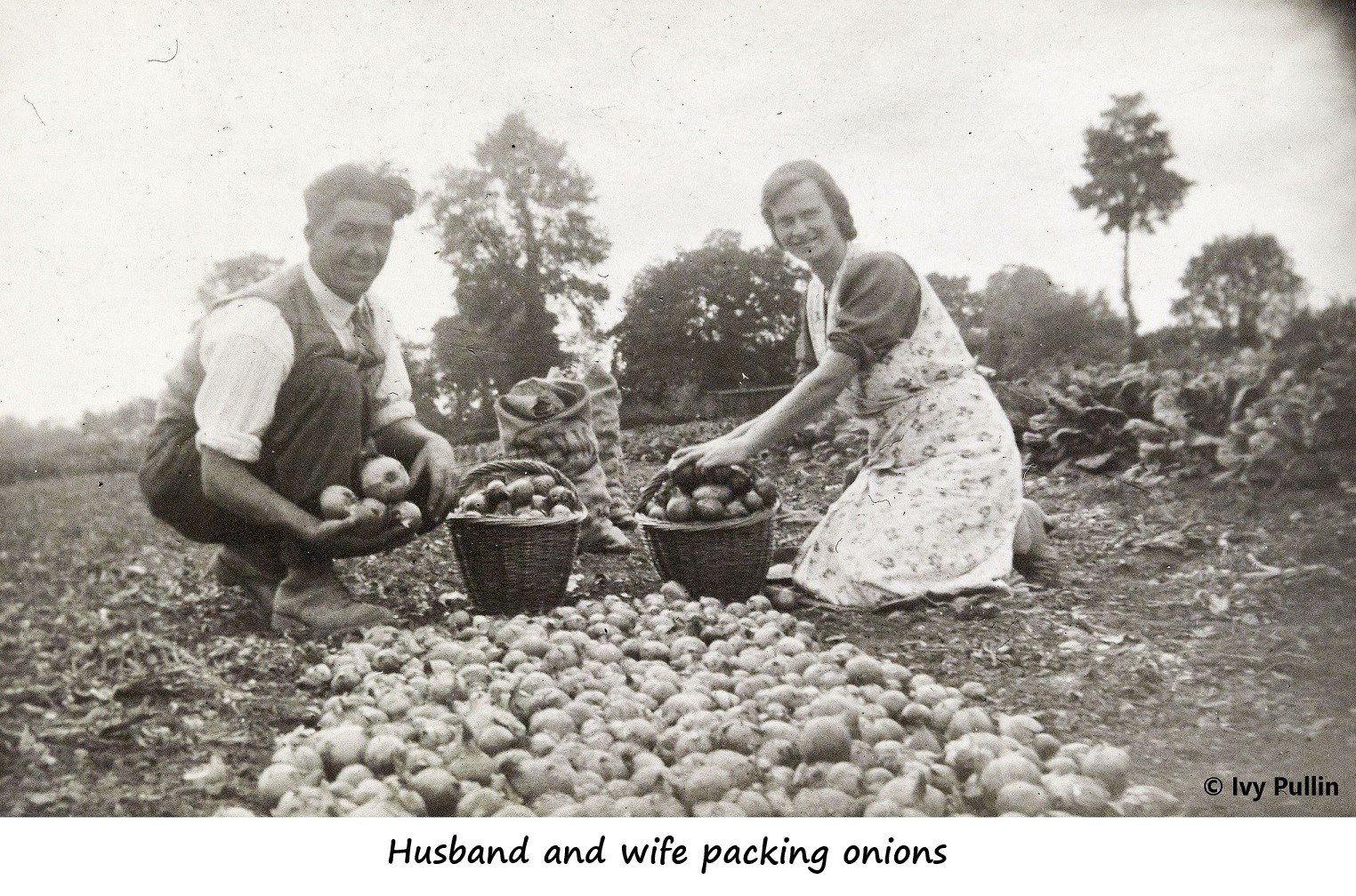 Couple packing onions