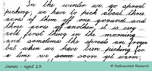 1933 letter extract - sprout picking