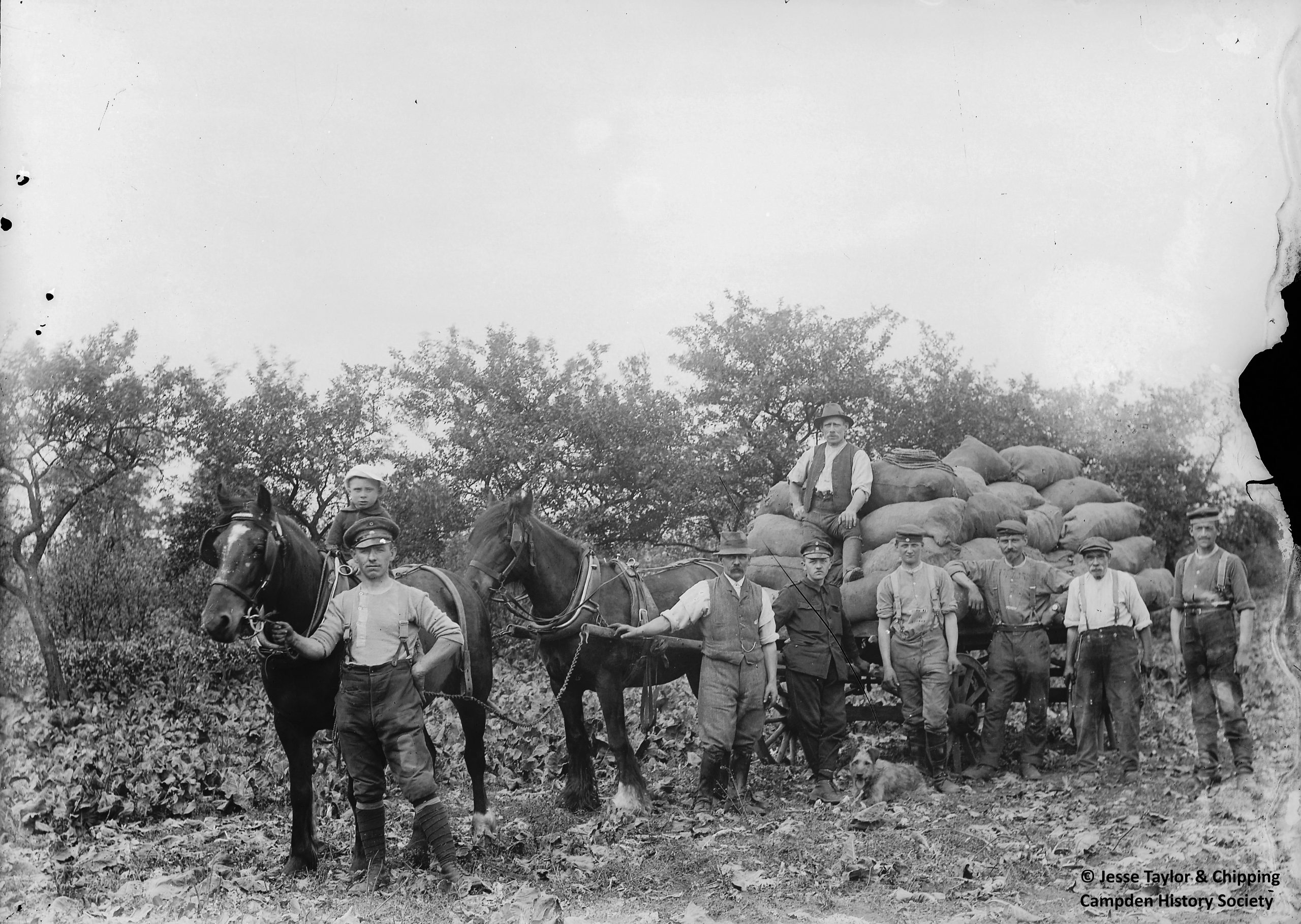 POWs with loaded cart