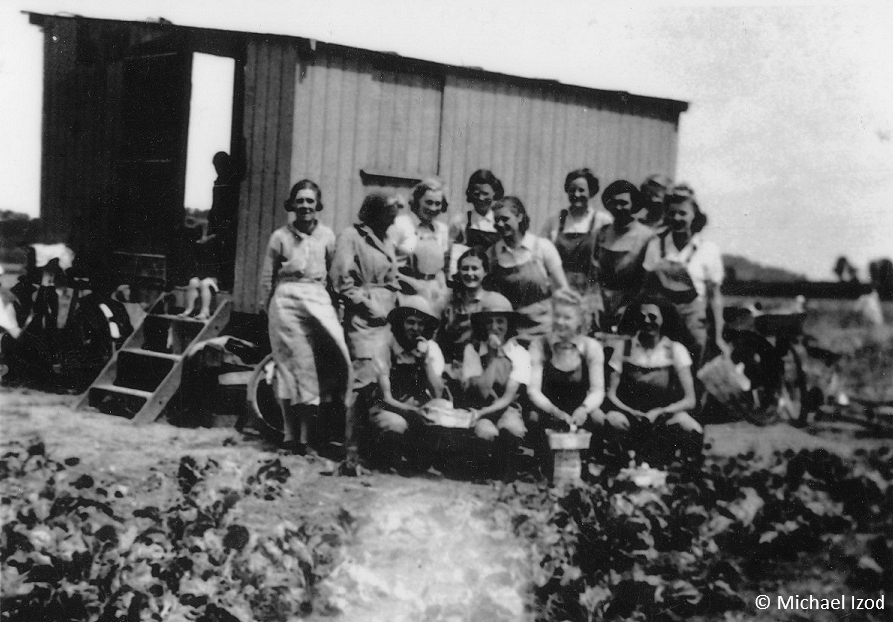 Informal shot of land girls by shed
