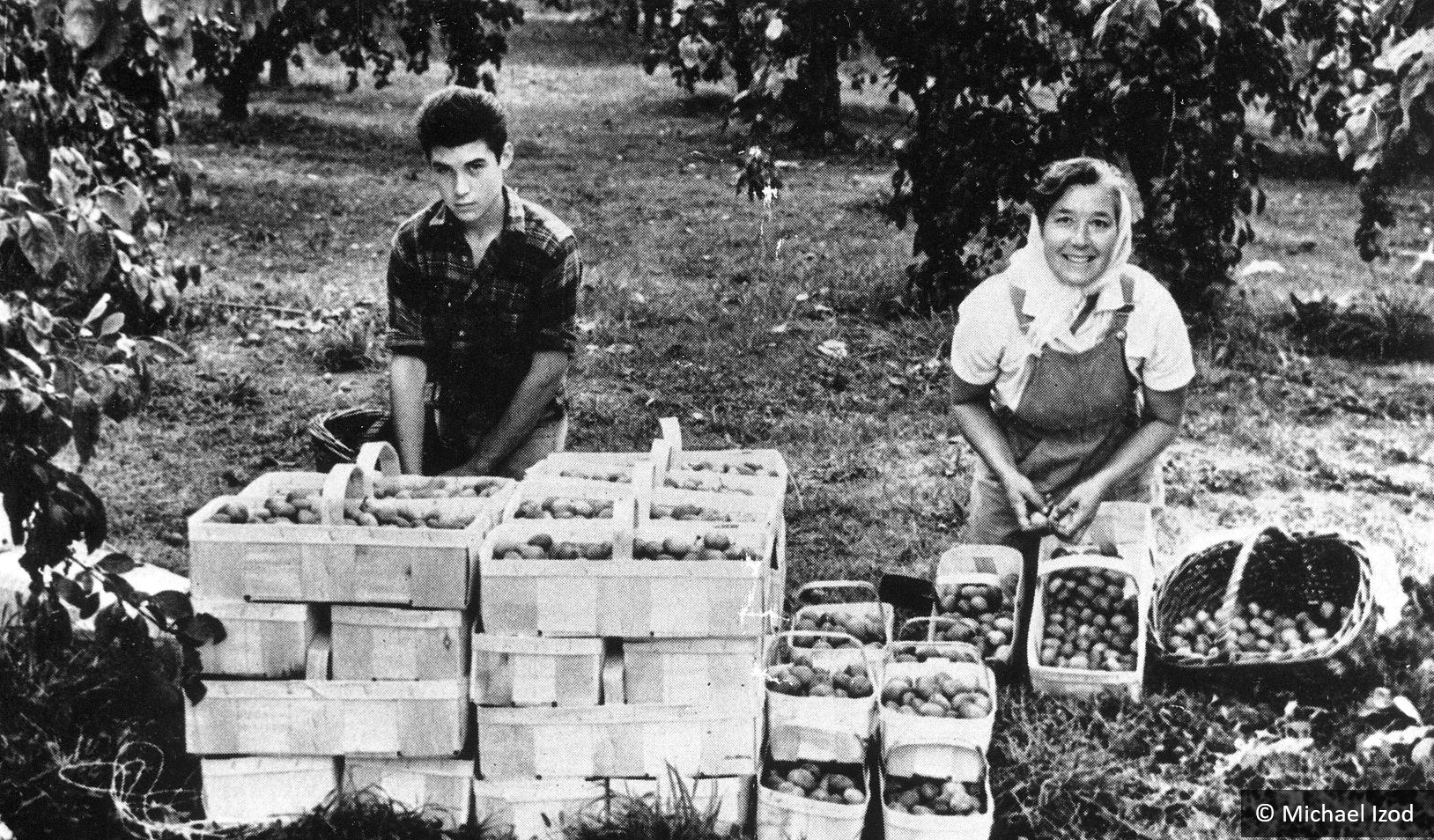 Mother and son with stack of plum baskets