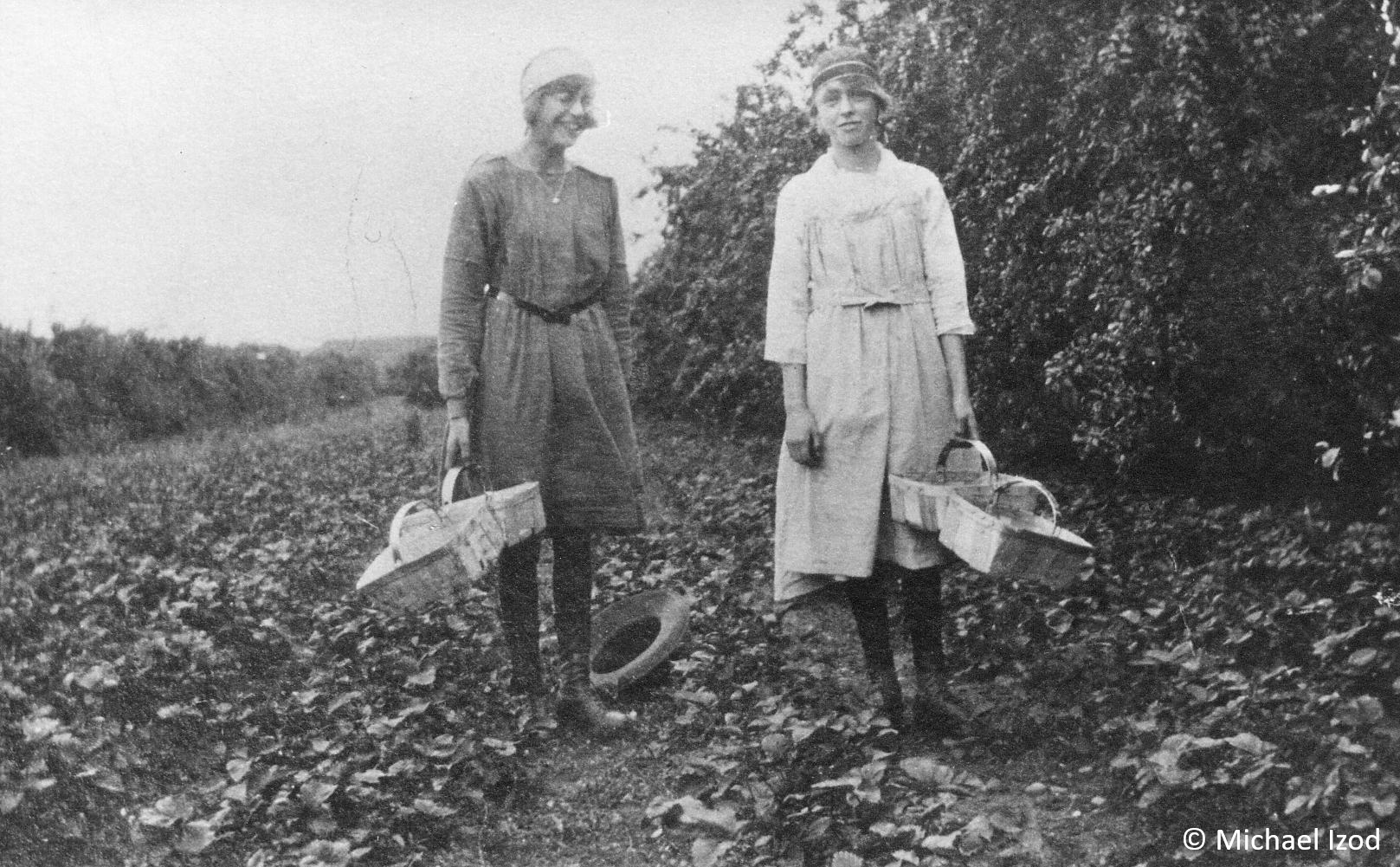 Two young girls strawberry picking