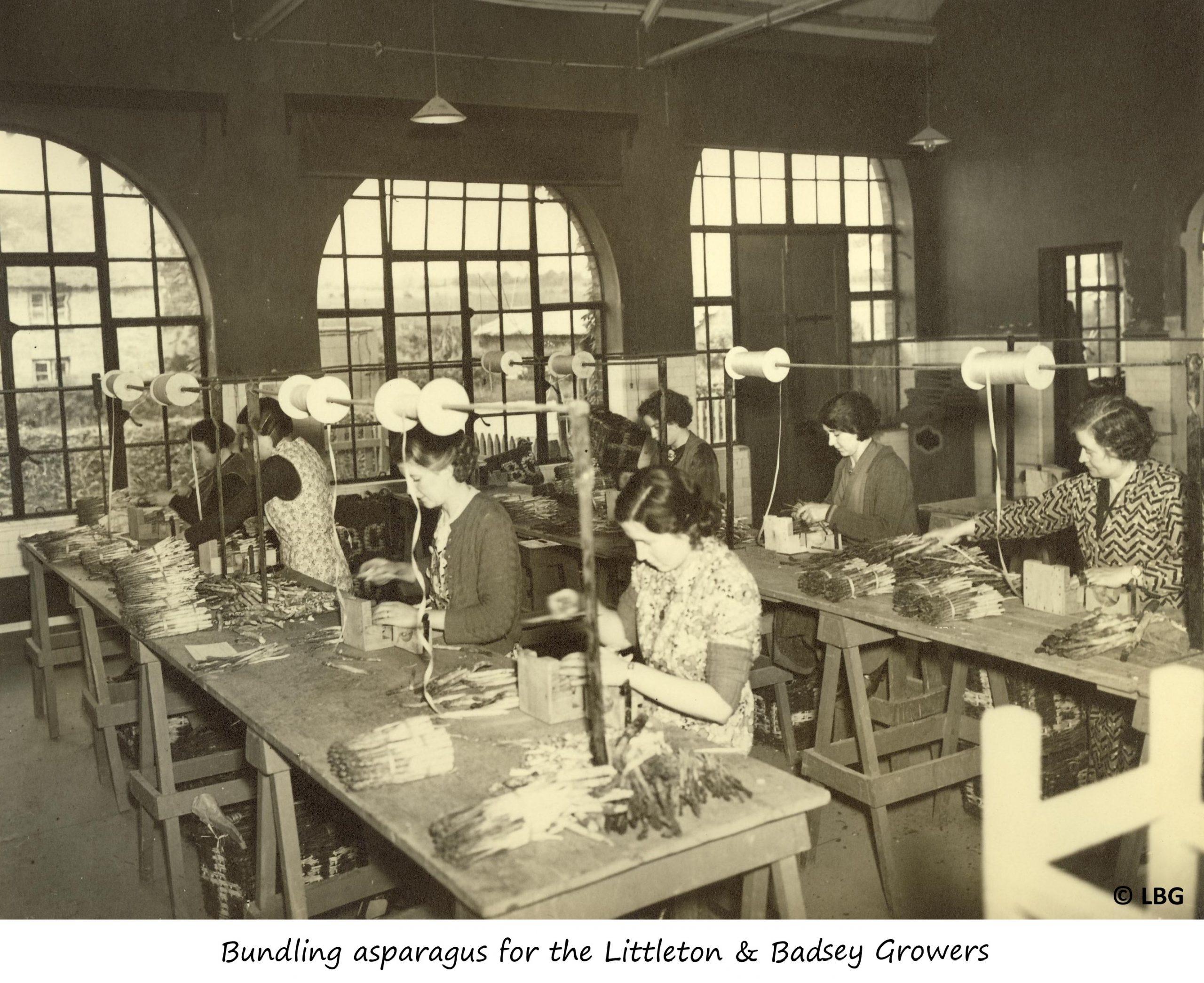 Women bundling asparagus for LBG