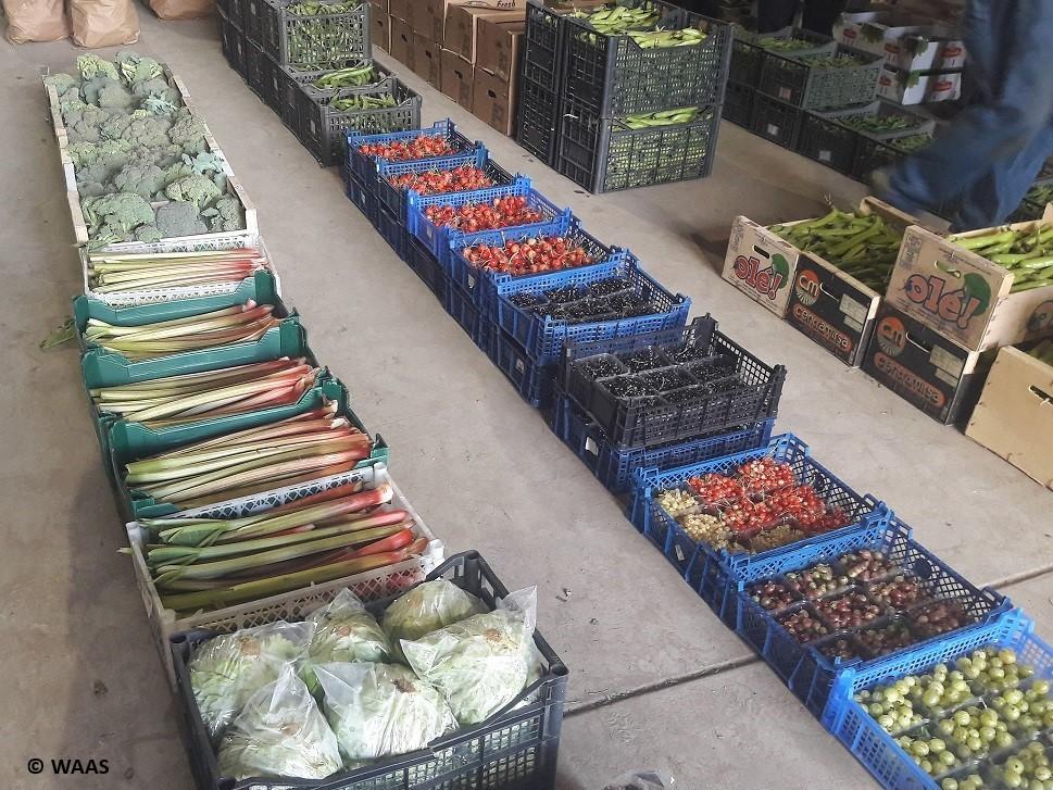 Chadbury produce market