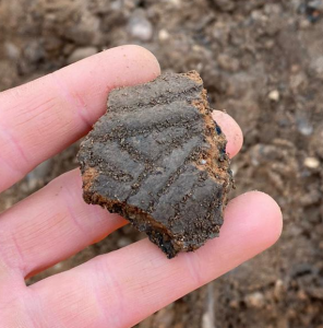 Late Neolithic/early Bronze Age Grooved Ware